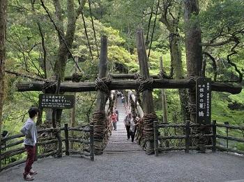 170506-043徳島三好祖谷かずら橋1.JPG